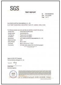 SGS test report 4